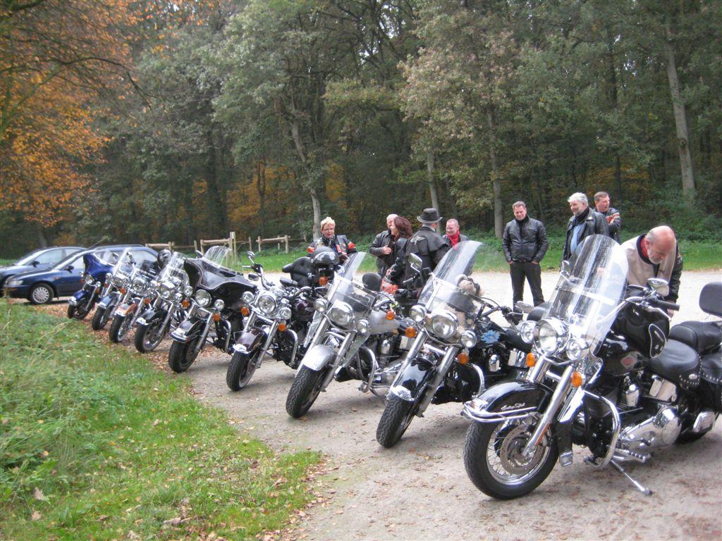 2008-10-13-HOG RO (1)