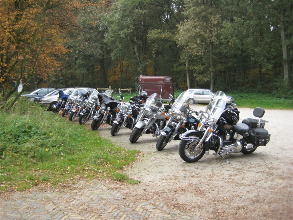 2008-10-13-HOG RO (5)